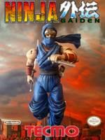 Ryu Hayabusa Ninja Gaiden Custom Action Figure