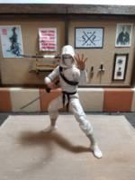Dojo - Custom Action Figure Diorama (G I  Joe) Custom Diorama / Playset